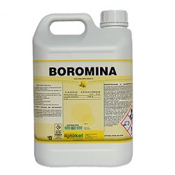 boromina