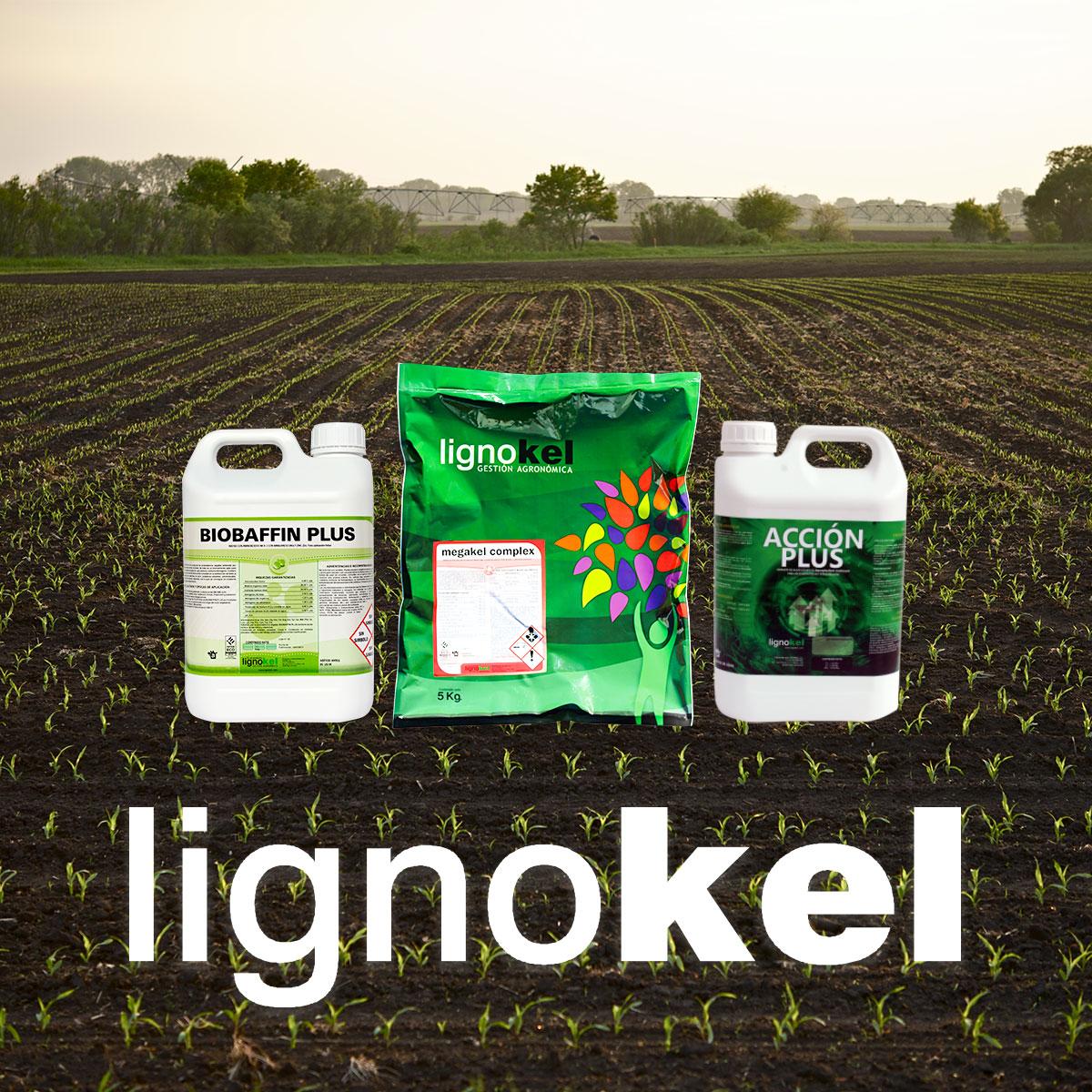 Productos cultivos ecologicos